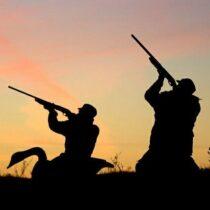 جریمه ۵۰ میلیون تومانی شکارچی کل های وحشی درلنده