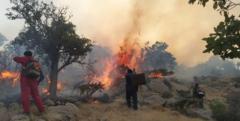عامل آتشسوزی منطقه شبلیز دنا دستگیر شد
